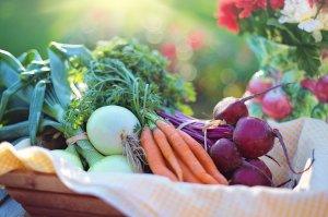 Вниманию сумчан: в Украине появятся реестры органической продукции