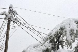 На Сумщине из-за непогоды остались без электричества 82 населенных пункта