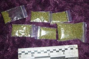 Полиция изъяла у несовершеннолетней девушки наркотиков и психотропов почти на 1000 долларов