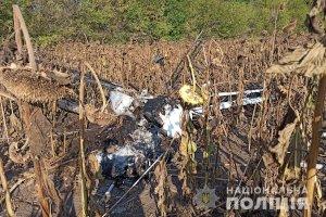 В Сумской области разбился самолет,  пилот погиб
