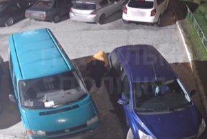 В Сумах неизвестный на ул. Интернационалистов резал колеса автомобилей: его задержала полиция