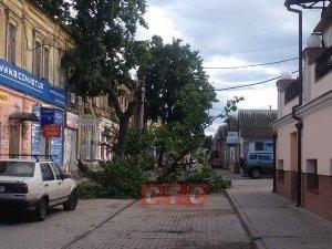 В Сумах шквальный ветер повалил деревья,  повредил крыши и коммуникации