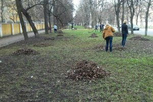 КП «Зеленстрой» проводит работы по благоустройству зеленых зон города