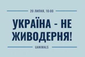 Сумчан просят присоединиться к акции «Украина — не живодерня»