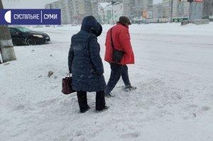 Сумщину засыпало снегом: как устраняют последствия непогоды?