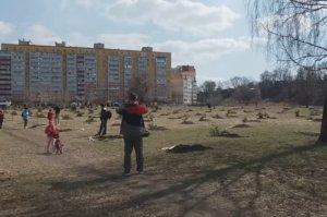 В Сумах у озера Чеха высадили почти 450 деревьев разных пород