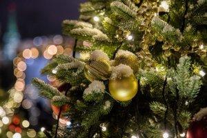 Как сумчане будут отдыхать на Новый год и Рождество