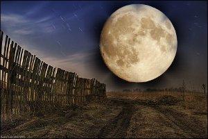 Лунный посевной календарь огородника: луна в знаках Зодиака