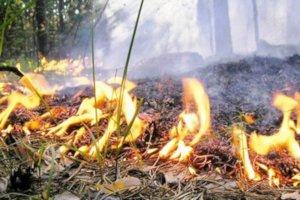 Смерть двух людей во время поджога травы