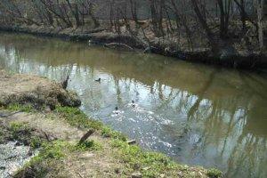 Сумские экологи передали в прокуратуру материалы по водоканалу