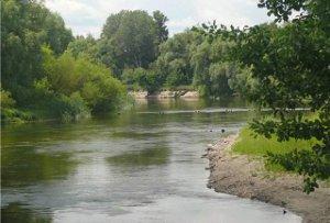 Сумчанам не рекомендуют купаться в водоемах города: результаты исследований