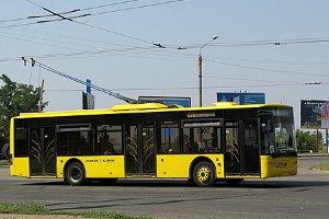 В Сумах с сегодняшнего дня школьники ездят в коммунальном транспорте бесплатно